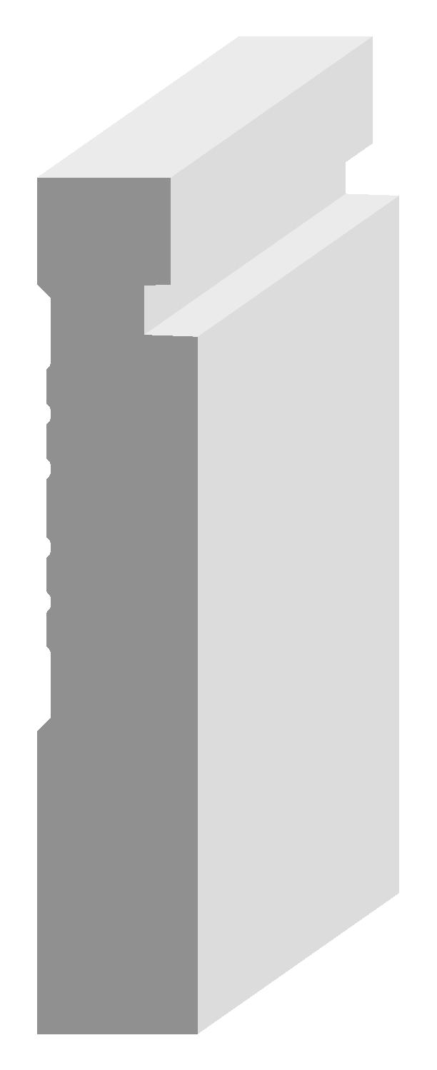 Z1079 BASE