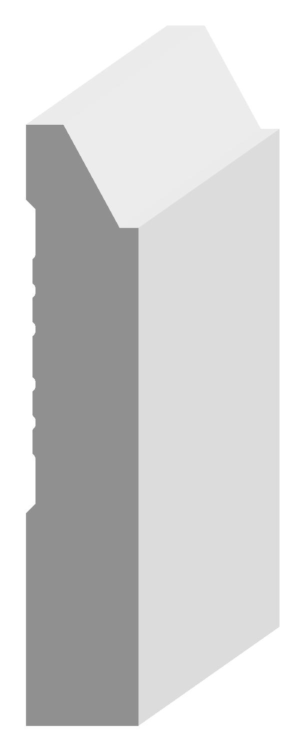 Z1181 CASE